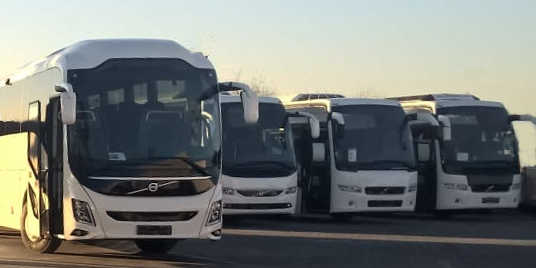 charter buses for transfers and sightseeing tours